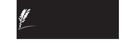roth-pub-logo-black-260x901.png