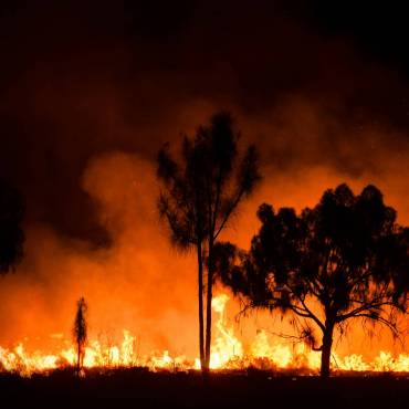 australian-bush-fire.shutterstock_1437869741-scaled.jpg