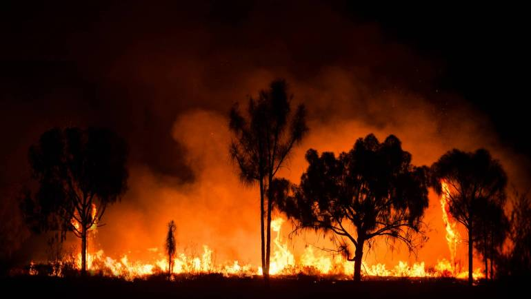 Australian Bushfire crisis shows the persuasive power of big numbers
