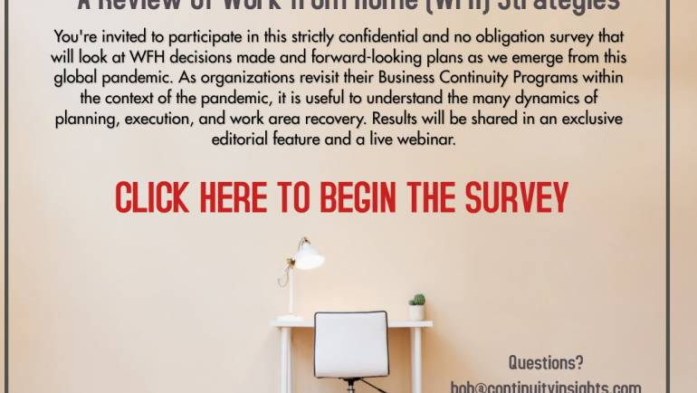 WORK FROM HOME STUDY: A Review of Work from Home (WFH) Strategies
